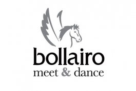 Bollairo logo design