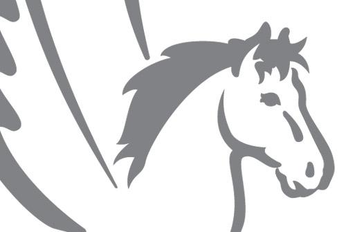 Logo design Bollairo