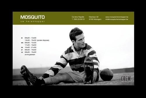 Website Mosquito