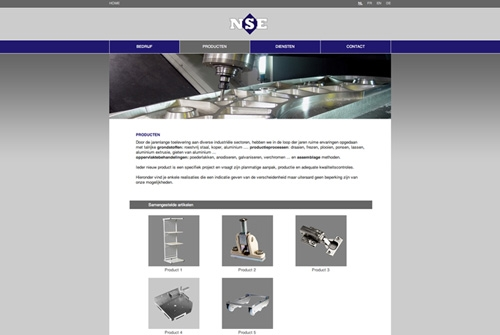 Website NSE